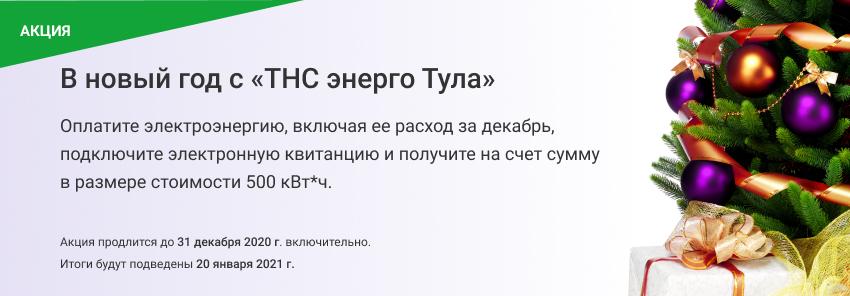 Акция_НГ_Тула (1).jpg